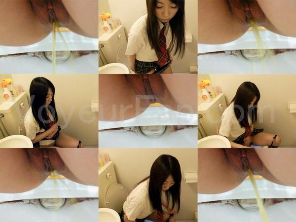 Hiroshi Toilets dwt003_0340_01