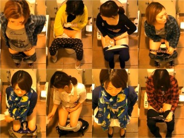 女性たちの洋式お手洗い 11(デパート編)