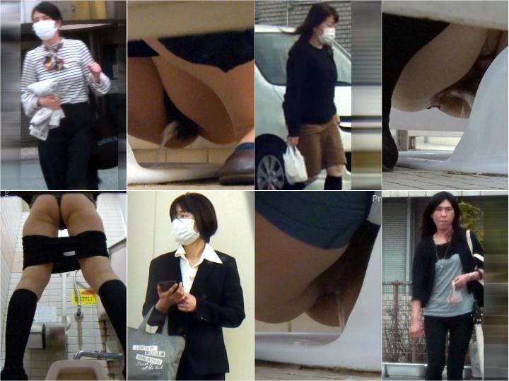 JapToilet240 HD Japanese Toilet Style.240 OL